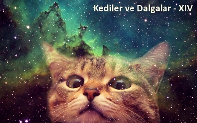 Kediler ve Dalgalar-XIV