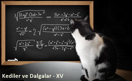Kediler ve Dalgalar-XV